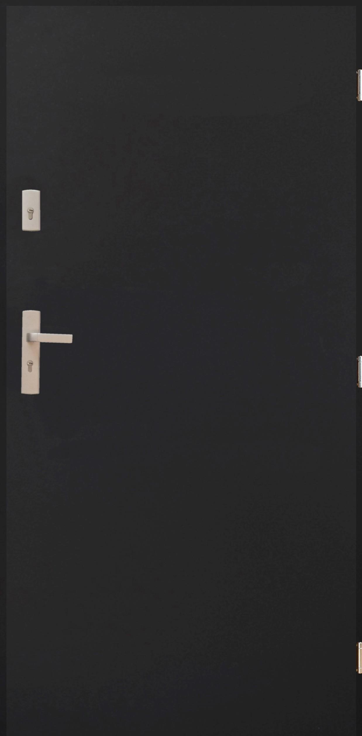Drzwi BX 01